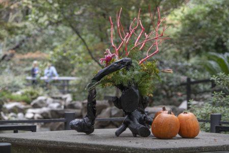 Japanese Garden Ikebana Display @ Descanso Gardens | La Cañada Flintridge | California | United States