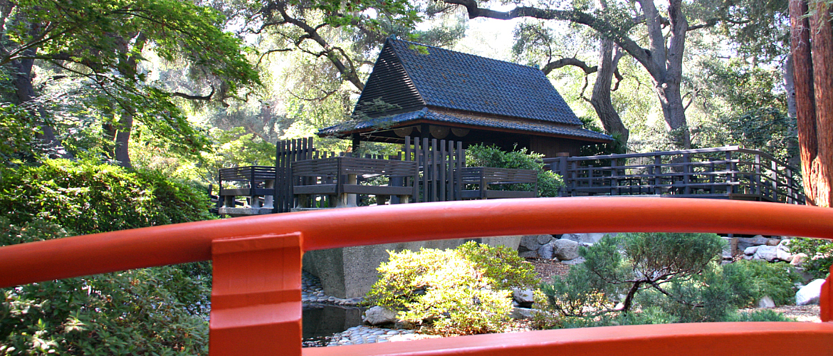 Japanese Garden Wordpress crop