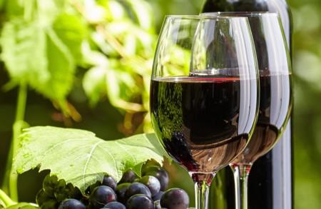 Pinot Noir Dinner