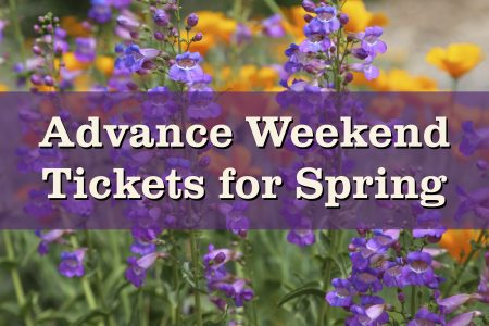 Advance Spring tickets