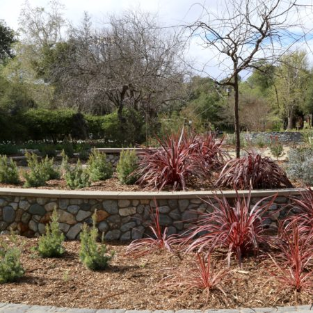 Superb The Gardensu0027 Horticulture Staff Designed A New Display Featuring Dramatic  Plants With Flowers And Foliage. This Evergreen Garden Will Be ...