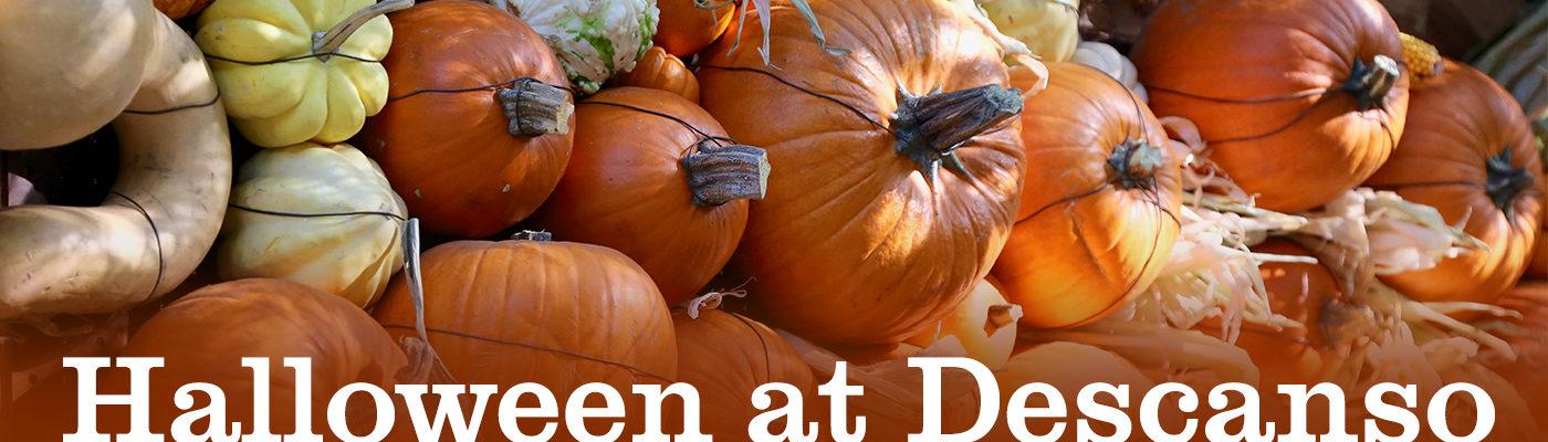 Descanso Gardens Halloween 2020 Halloween   Descanso Gardens Guild